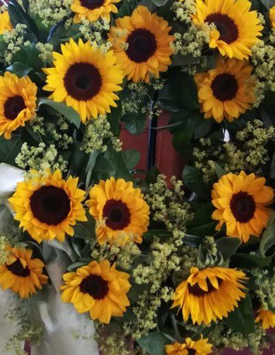 Sonnenblumen zum Gruß
